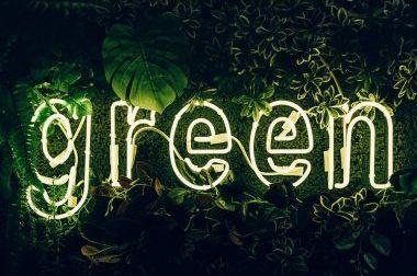Infoveranstaltung Green Innovation